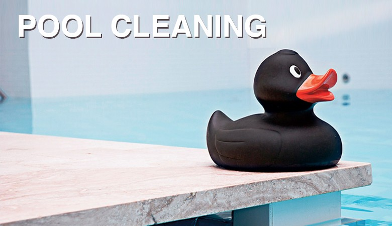 everything you need for cleaning pools